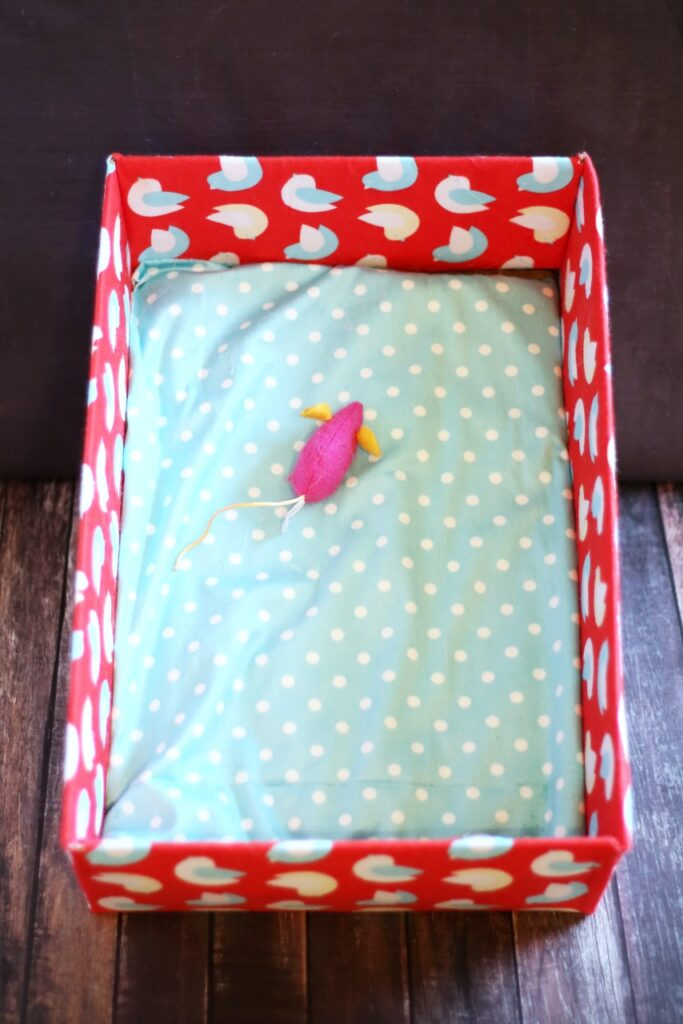 DIY cardboard box cat bed