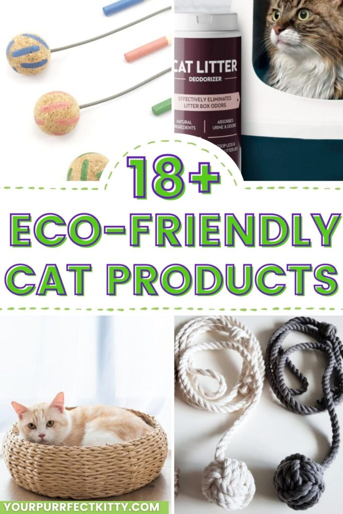 18+ Eco-friendly Cat Products
